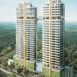hyll-on-holland-koh-brothers-track-record-lincoln-suites-singapore